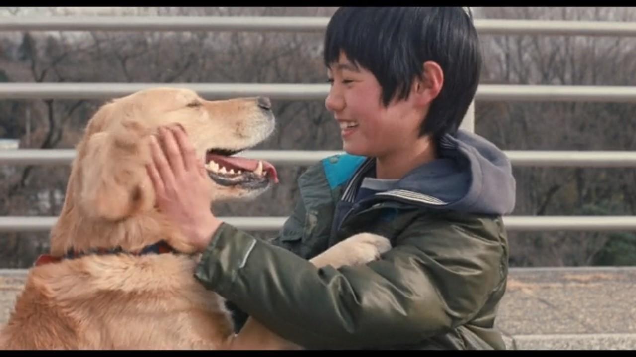 実際の犬をモデルにした映画『ロック わんこの島』は忘れてはいけない